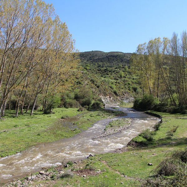 Río Leza a su paso por Jalón de Cameros.